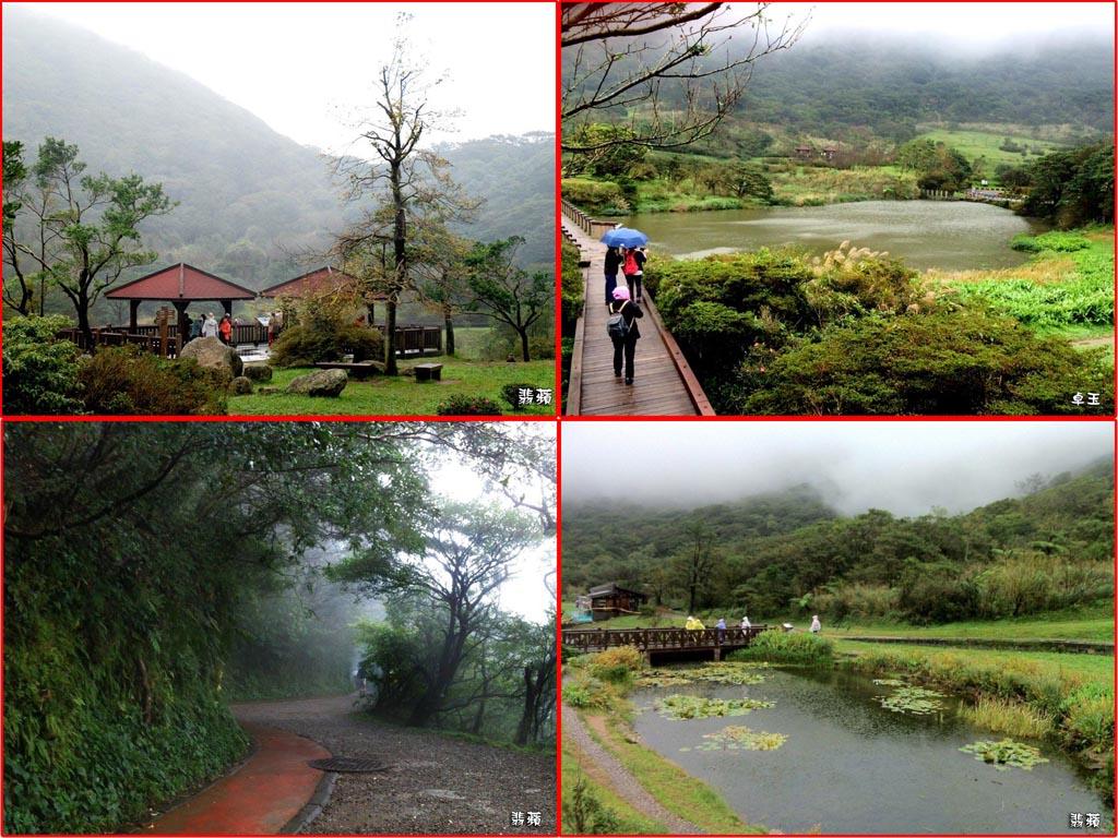 2015.11.11 大屯自然公園&二子坪