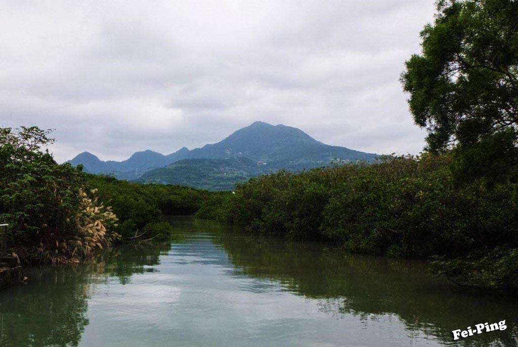 2016.12.14    紅樹林自然保留區